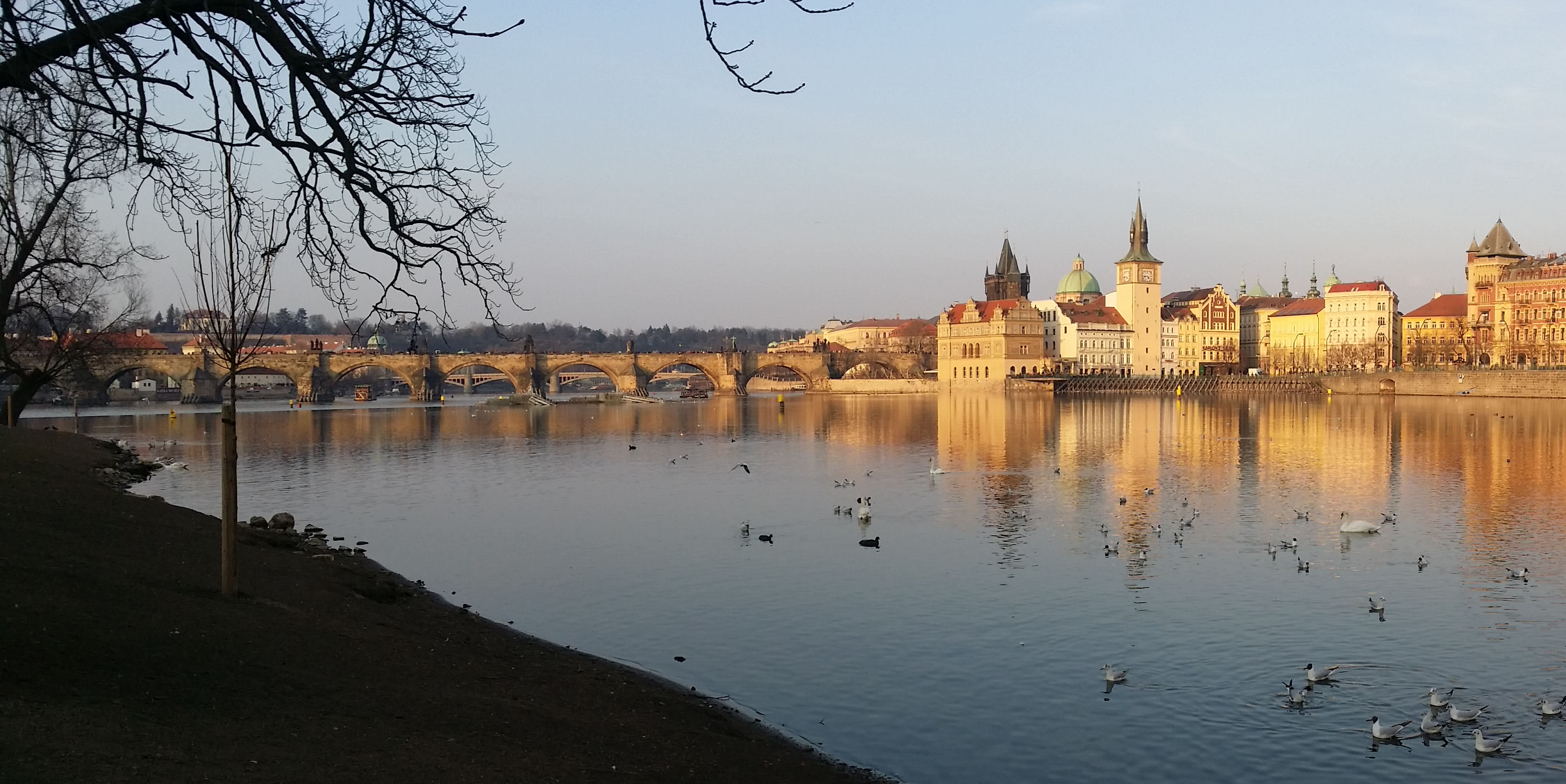 Charles Bridge, Prague, from Arrow Island Park